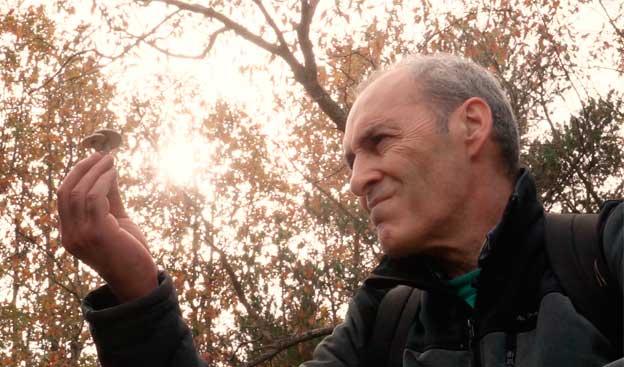 'Cazadores de setas' regresa a Aragón TV